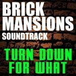 Brick Mansions Soundtrack CD. Brick Mansions Soundtrack