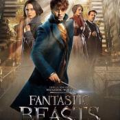 It remains quite a bit of time to the moment when a new story appears on the big screen, telling of the world's most famous eleven-year-old teenager in the book history. Many have already heard that story directly that Harry Potter can be continued, but that is something that can literally be touched because the full trailer of 'Fantastic Beasts and Where to Find Them' has already appeared on the web. Enjoying the spectacular thing, it is impossible not to share your thoughts about this picture, impressive in every respect.